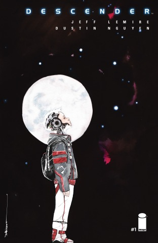 Descender-cover