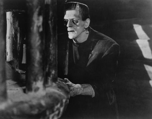 Frankenstein-Stills-classic-movies-19760768-1874-1470