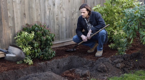 """""""יש לנו קבר, עכשיו רק צריך להתאים לו גופה"""""""