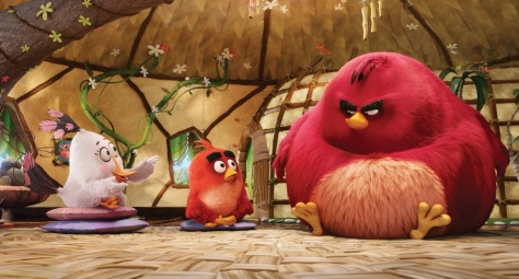 angry birds 014