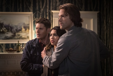 Supernatural, Twigs & Twine & Tasha Banes 03