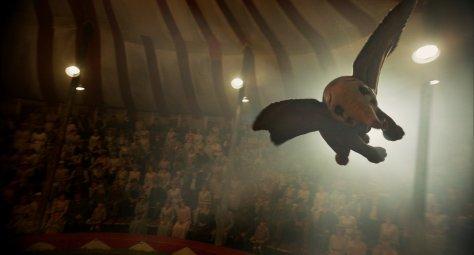 Dumbo 015