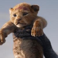 """ביקורת, """"מלך האריות"""" גרסת 2019 - האקונה מטטה בהחלט"""